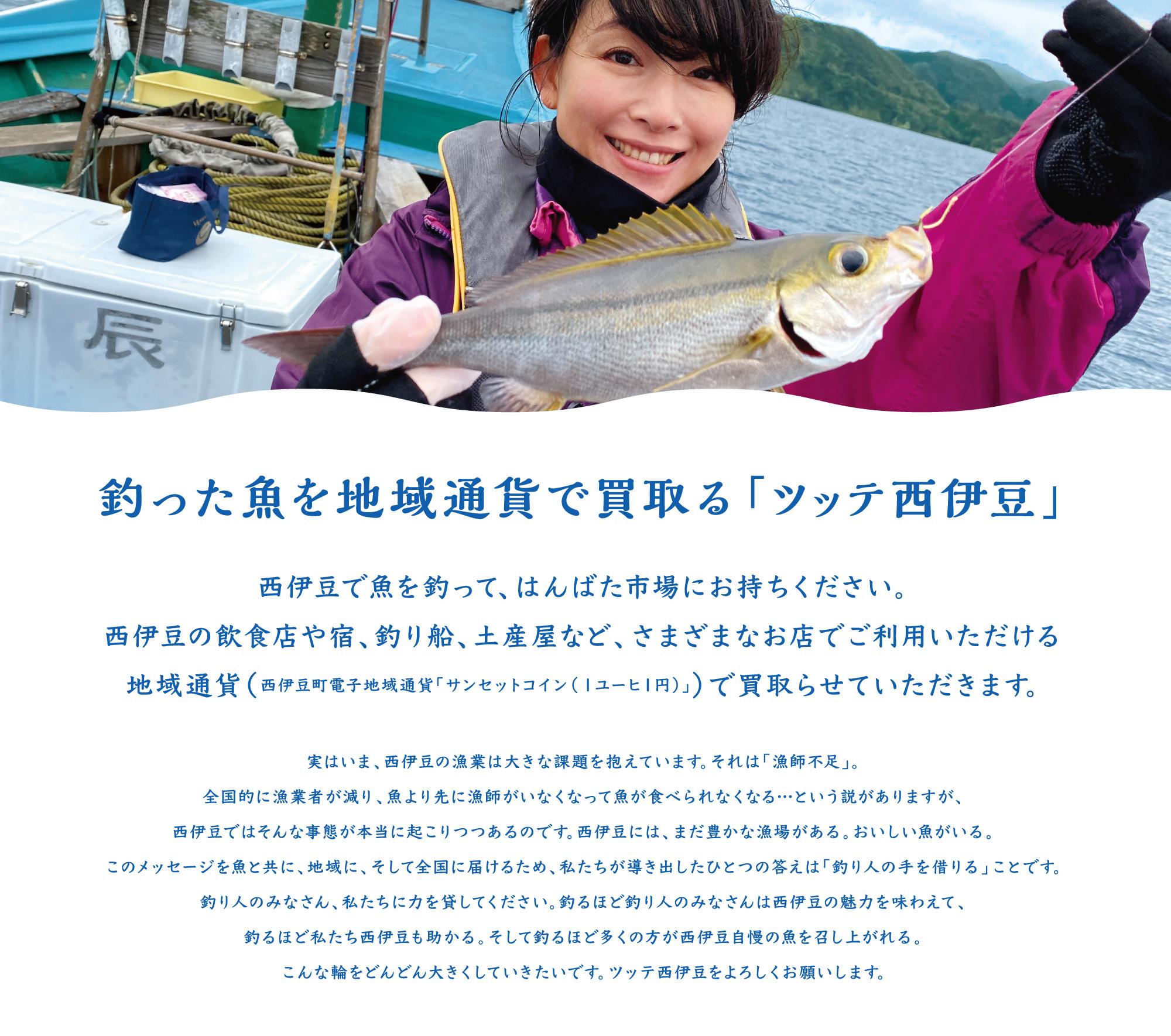 釣った魚を地域通貨で買取る「ツッテ西伊豆」 西伊豆で魚を釣って、はんばた市場にお持ちください。 西伊豆の飲食店や宿、釣り船、土産屋など、さまざまなお店でご利用いただける 地域通貨(西伊豆町電子地域通貨「サンセットコイン(1ユーヒ1円)」)で買取らせていただきます。 実はいま、西伊豆の漁業は大きな課題を抱えています。それは「漁師不足」。 全国的に漁業者が減り、魚より先に漁師がいなくなって魚が食べられなくなる…という説がありますが、 西伊豆ではそんな事態が本当に起こりつつあるのです。西伊豆には、まだ豊かな漁場がある。おいしい魚がいる。 このメッセージを魚と共に、地域に、そして全国に届けるため、私たちが導き出したひとつの答えは「釣り人の手を借りる」ことです。 釣り人のみなさん、私たちに力を貸してください。釣るほど釣り人のみなさんは西伊豆の魅力を味わえて、 釣るほど私たち西伊豆も助かる。そして釣るほど多くの方が西伊豆自慢の魚を召し上がれる。 こんな輪をどんどん大きくしていきたいです。ツッテ西伊豆をよろしくお願いします。
